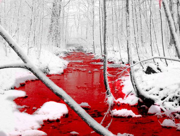 blood moon 2019 vermont - photo #32
